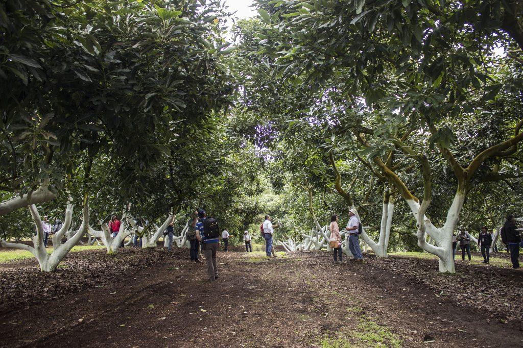 Visita a Agro González: Productora, empacadora y exportadora de Jalisco
