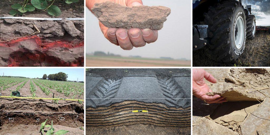 Compactación y sellamientos superficiales del suelo y sus efectos asociados al desarrollo de los vegetales