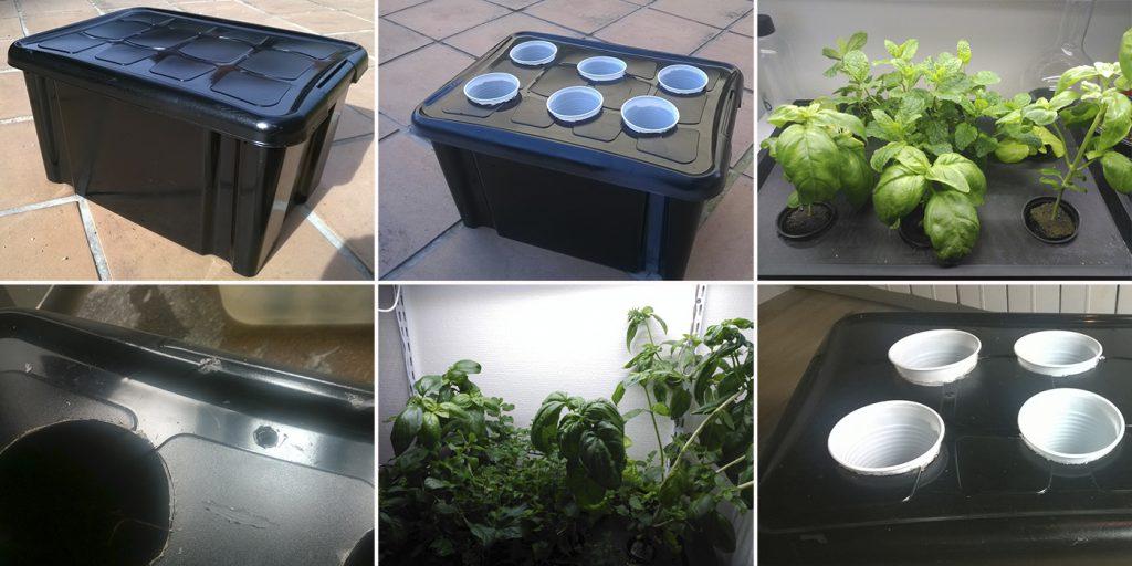 Caja negra: el sistema hidropónico más barato y sencillo. Paso a paso