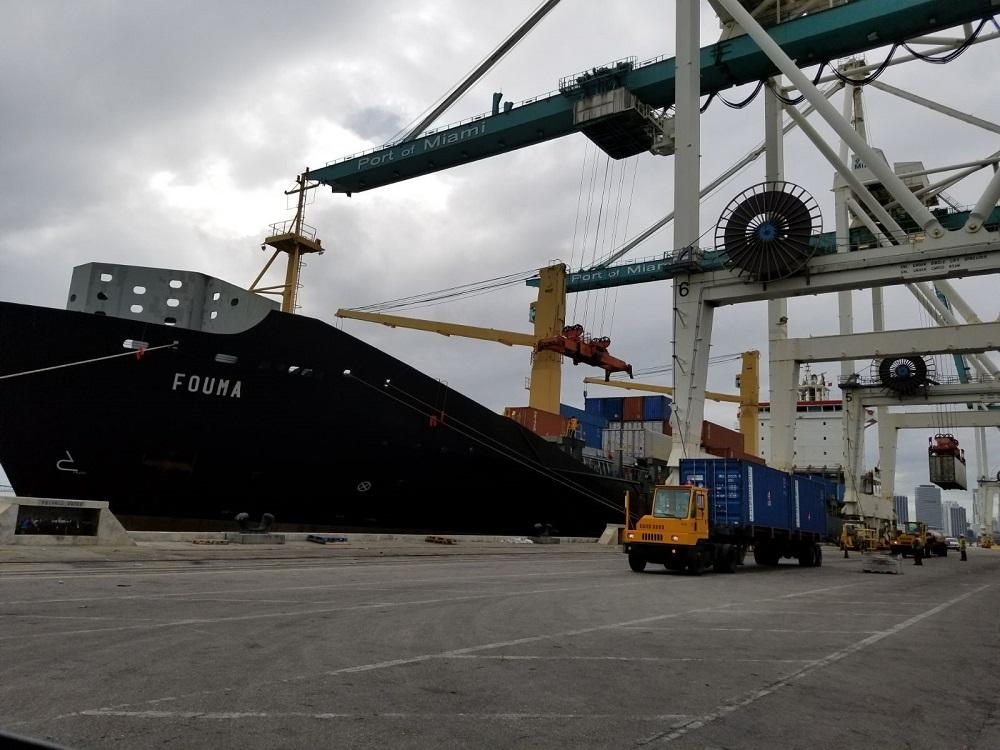 Primer embarque de Pitahayas amarillas ecuatorianas busca consolidar el fruto en Estados Unidos