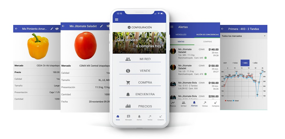 Smattcom: nueva red social para la comercialización de productos frescos