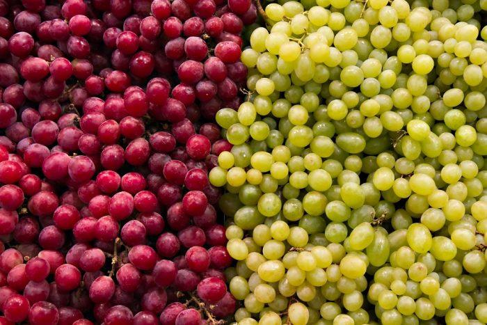 Bloqueo del Canal de Suez genera cambios en el mercado europeo de la uva