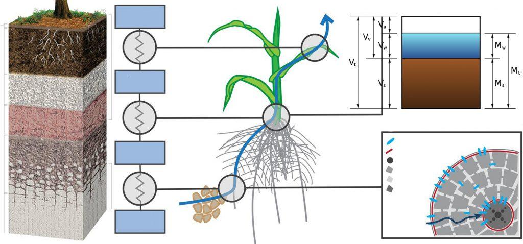 Manual de estudio y ejercicios de edafología y conceptos básicos del suelo para estudiantes