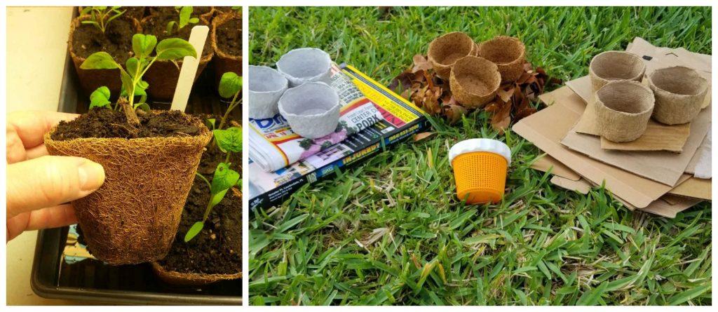 Interesante tutorial! Cómo hacer macetas orgánicas biodegradables paso a paso