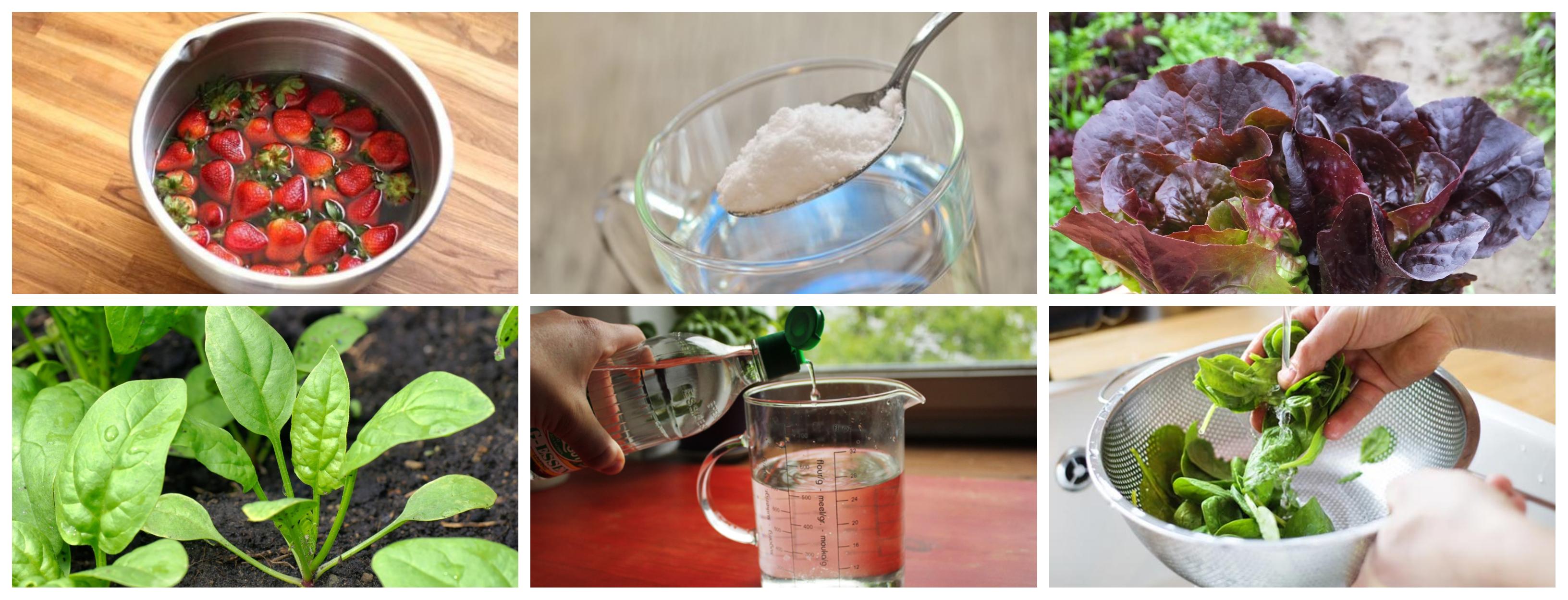 Tips Para Lavar Y Desinfectar Verduras Y Frutas Para Evitar