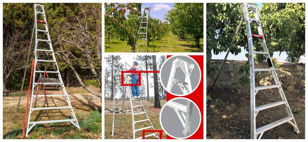 Guía para el uso seguro de escaleras agrícolas tipo trípode en el campo