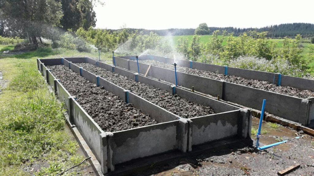 Lombricultura: Ahorro en el uso de fertilizantes y mejora de los ...