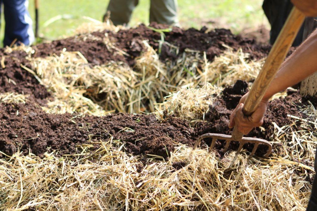 compost biodinámico
