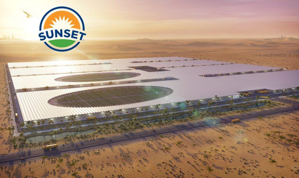 Joint Venture busca crear invernadero más grande del mundo