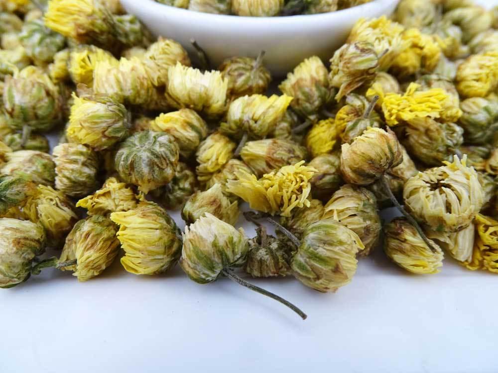 pelitre crisantemos
