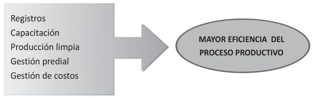 trazabilidad y buenas prácticas agrícolas en la producción de frambuesas