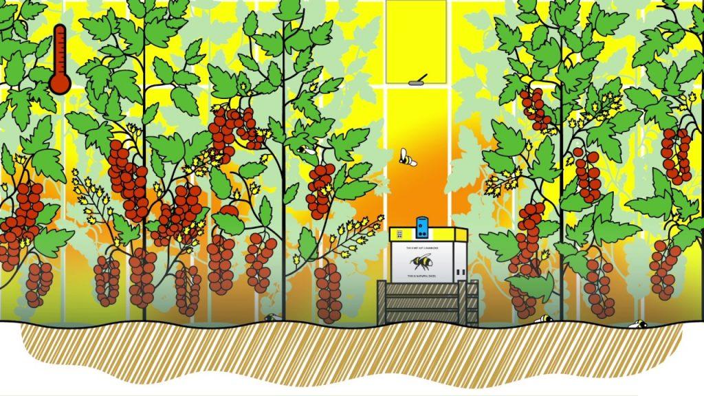 polinización en invernaderos