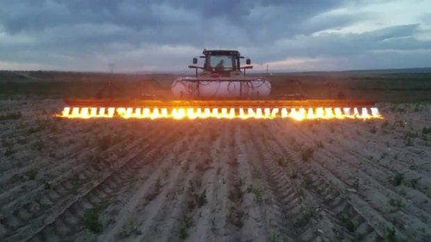 Tractores lanzallamas en agricultura ecológica