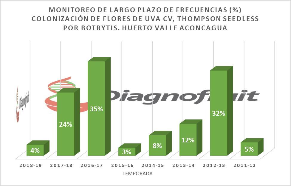 FRECUENCIAS DE COLONIZACIÓN POR BOTRYTIS DE FLORES DE THOMPSON SEEDLESS BAJO UN ESQUEMA DE MONITOREO INTEGRADO. LAS TEMPORADAS 2012-13, 2016-17 Y 2017-18 FUERON CONSIDERADAS COMO DE ALTO RIESGO, CONFIGURANDO MANEJOS ESPECIALES DE CONTINGENCIA, COMO COSECHAS TEMPRANAS, VENTA RÁPIDA, AUMENTO DE NÚMERO DE APLICACIONES, ENTRE OTRAS.