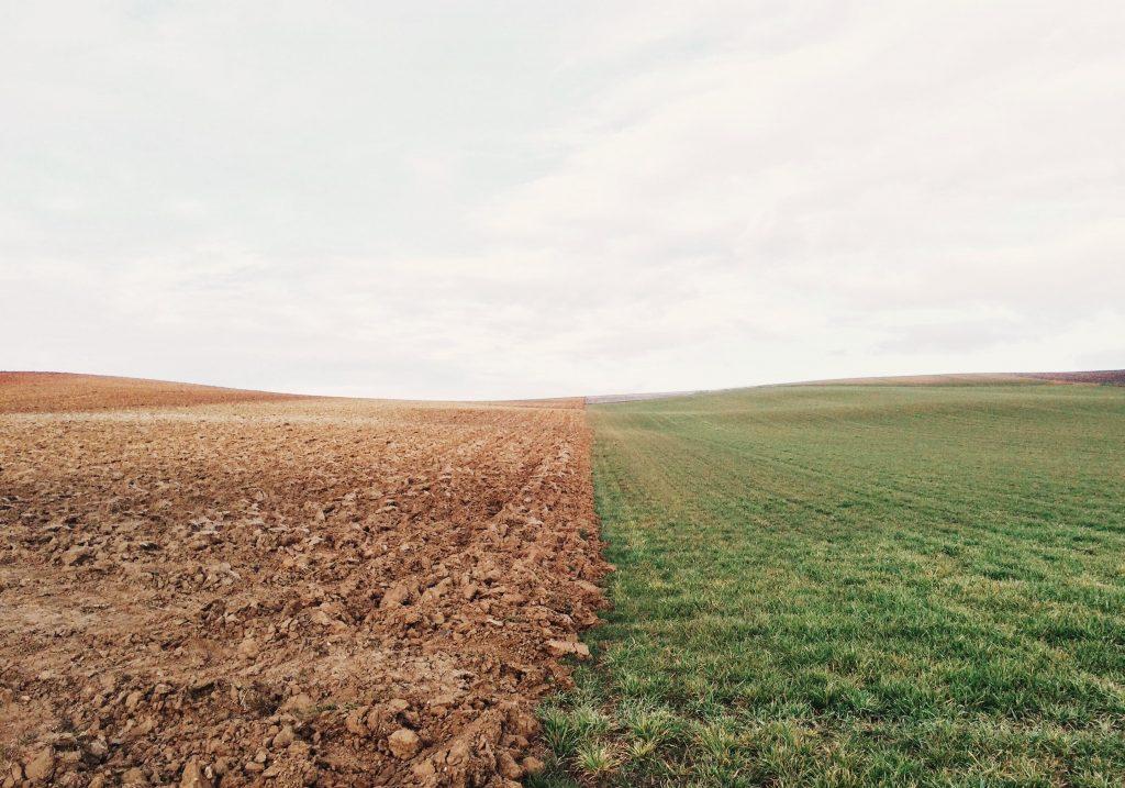 Manejo sustentable para evitar la degradación del suelo