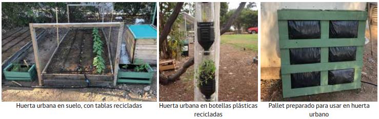Huertas urbanas a partir de residuos domiciliarios