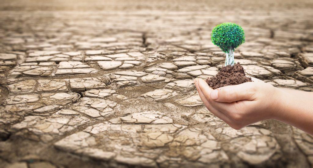 Sequía en Brasil disminuiría disponibilidad de energía para agricultura