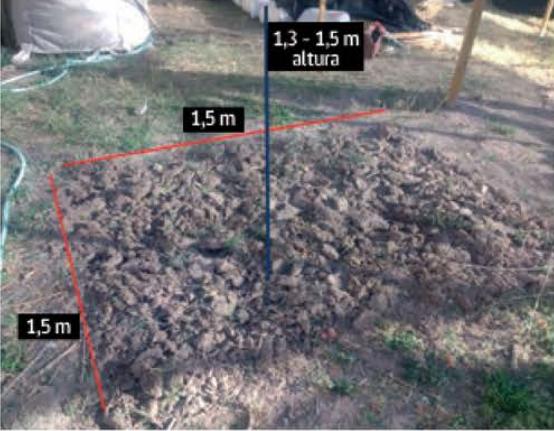 Compost de mostaza negra