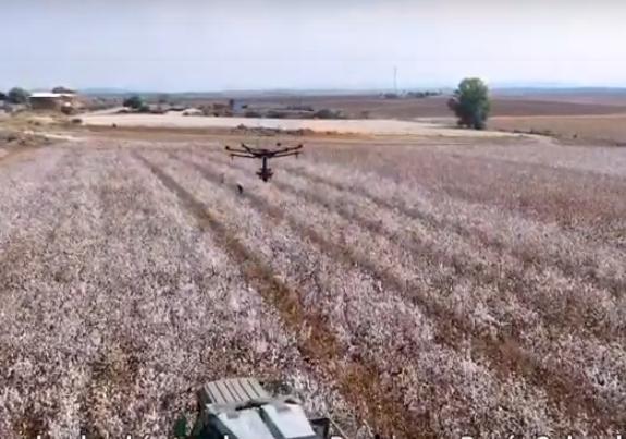 Tecnologías agrícolas de Israel