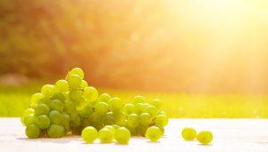 uva, fruta,