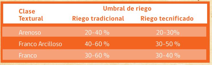 CUÁNDO Y CUÁNTO REGAR