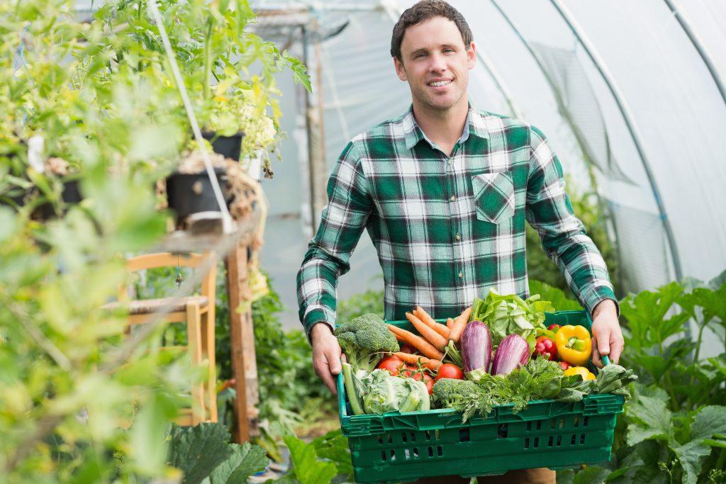 consejos sobre cultivos y plantas