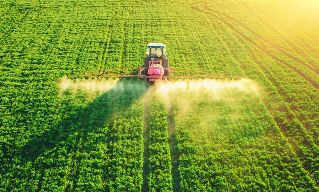 Los precios internacionales de los alimentos alcanzan su nivel más alto desde 2013