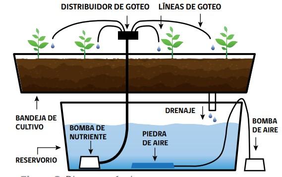 sistemas hidropónicos