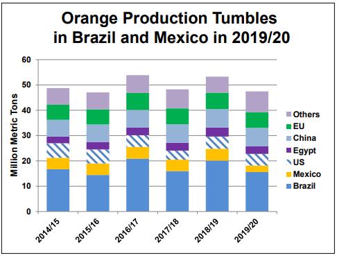 Producción de naranja global caería en casi 8 millones de toneladas -