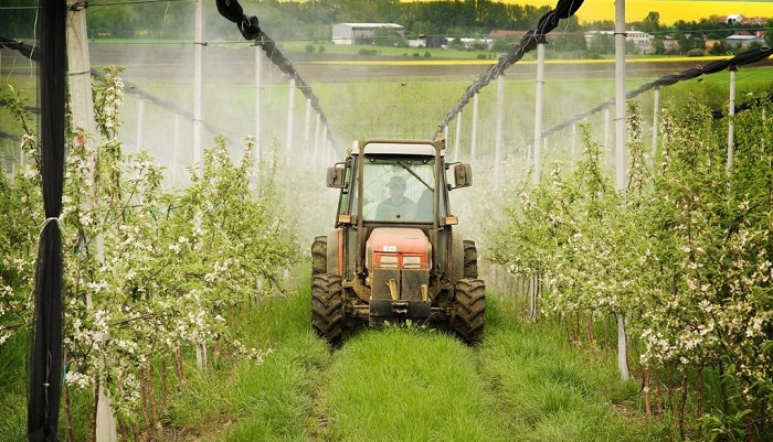 Desarrollan sistema de aplicación selectiva que reduce en un 75% la carga de plaguicidas en frutales