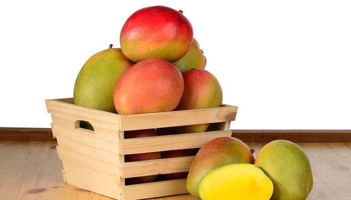 Exportaciones de mango de Latinoamérica a Estados Unidos siguen creciendo