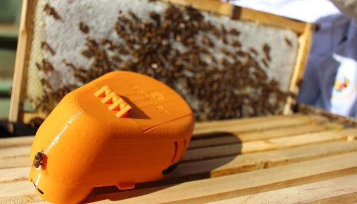 Crean dispositivo de ventilación autónoma que optimiza el ambiente al interior de las colmenas de abejas