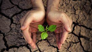 sequía agua
