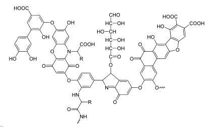 ácidos húmicos