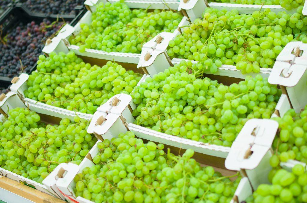 Lecciones de una catástrofe climática para la industria de la uva