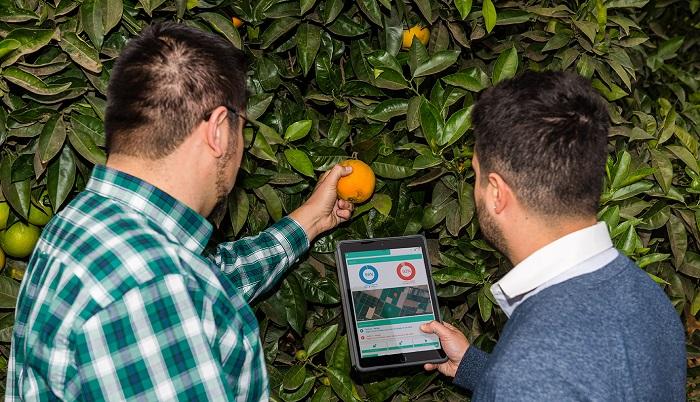 Aplicación digital genera ahorros de hasta un 70% en el uso de agua de riego