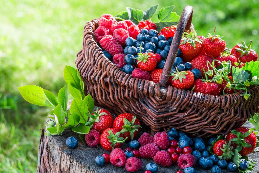 Berries y limones destacan en ventas de frutas del primer trimestre en medio de baja generalizada