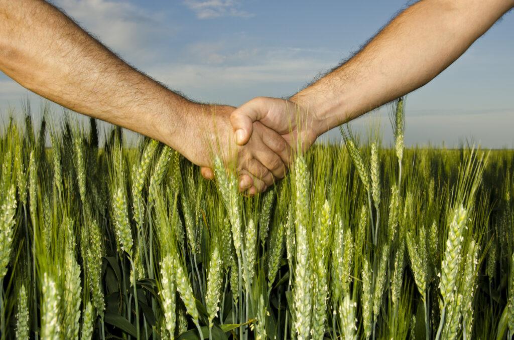 Fortalecimiento del modelo de cooperativas entregaría mayor poder a los productores agrícolas