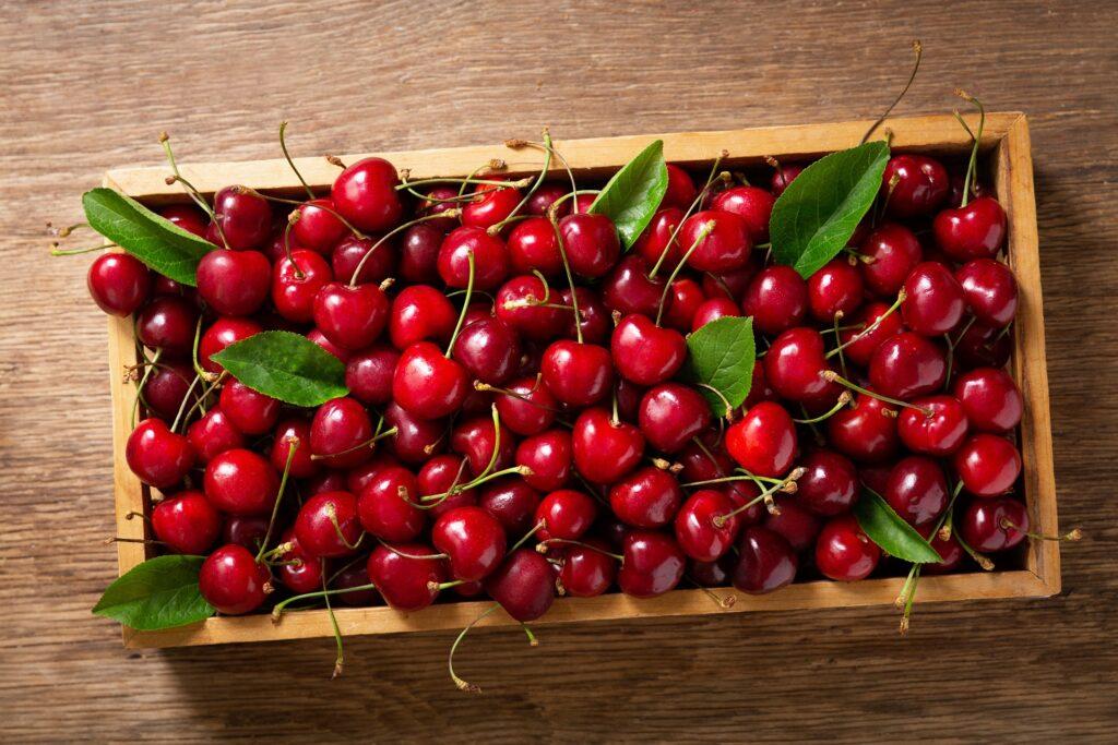 Importaciones chilenas crecen 75,8% en mayo con alza en cerezas