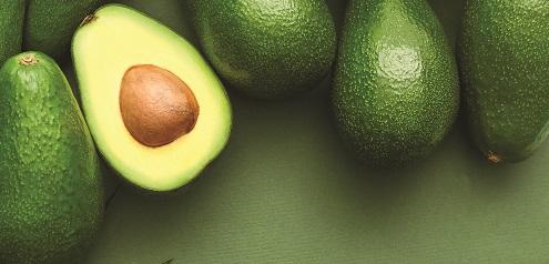 """AgroFresh anuncia el lanzamiento de recubrimientos """"plant based"""" bajo la marca VitaFresh Botanicals"""