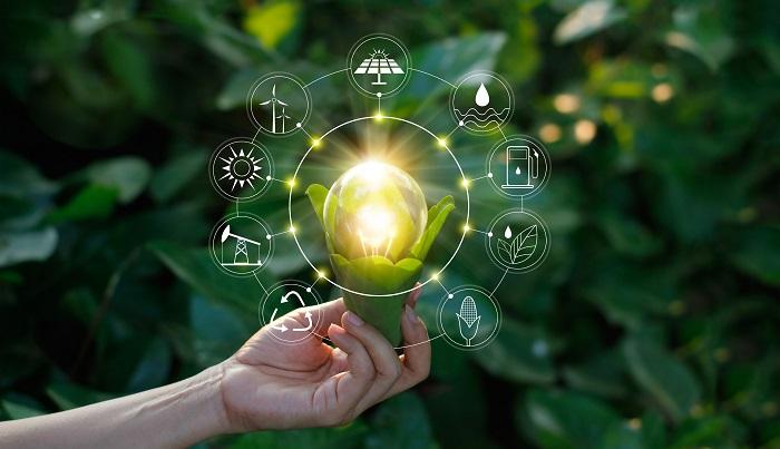 Innovación sustentable: Una mirada al futuro de la agroindustria
