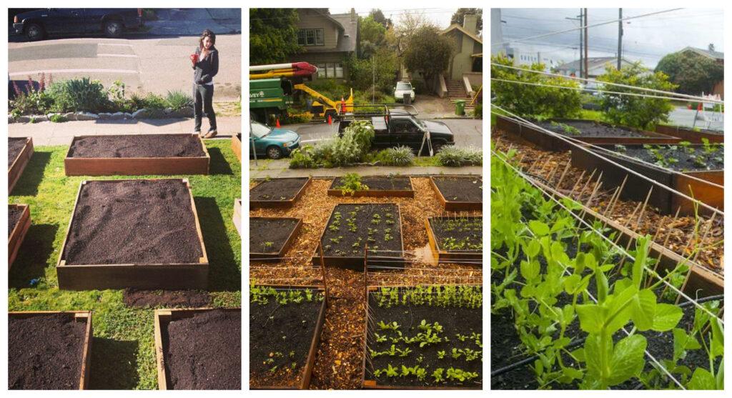 Cómo convertir tu jardín en una granja o huerto