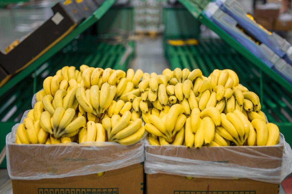 Producción de banano mexicano crece 2.9% en 2020