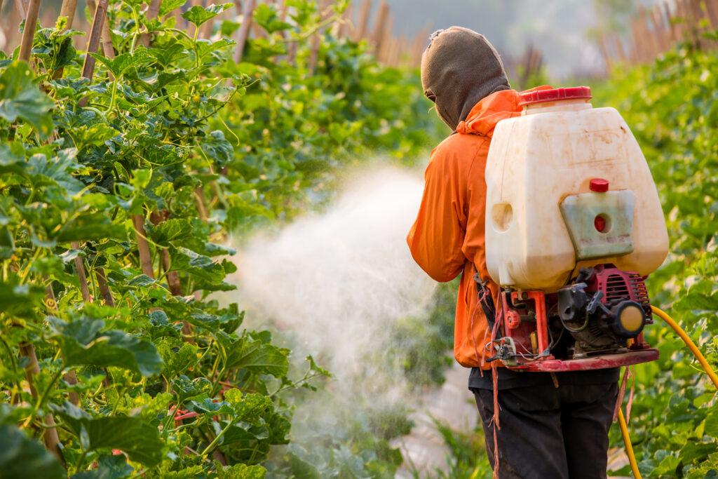 Uso de pulverizadores hidráulicos de mochila en huertos de berries
