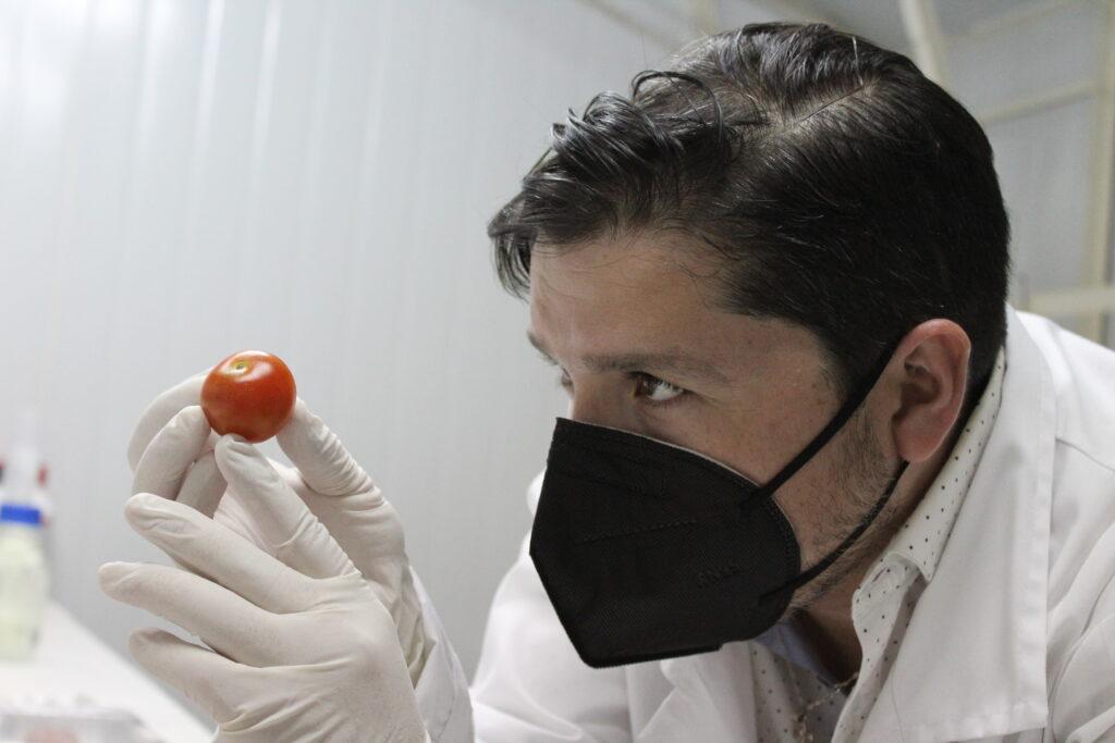 Nanocompuesto de origen natural podría ofrecer soluciones a la hortofruticultura