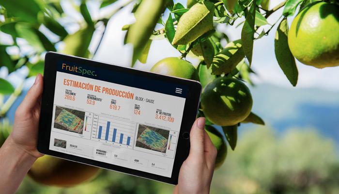 Optimice la operación y aumente la rentabilidad en cítricos con FruitSpec