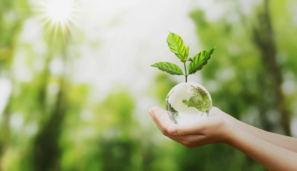 Día Internacional de la Tierra: Experto de Agronomía plantea principales desafíos para un planeta sano