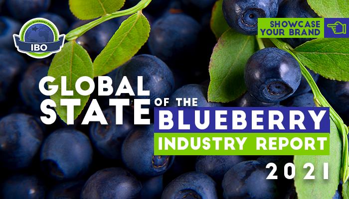 Agronometrics en Gráficos: IBO abrirá datos del mercado global de arándanos