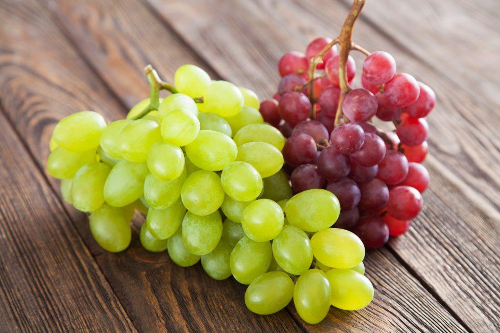 Exportaciones de fruta chilena alcanzan 1,74 millones de toneladas durante 2021