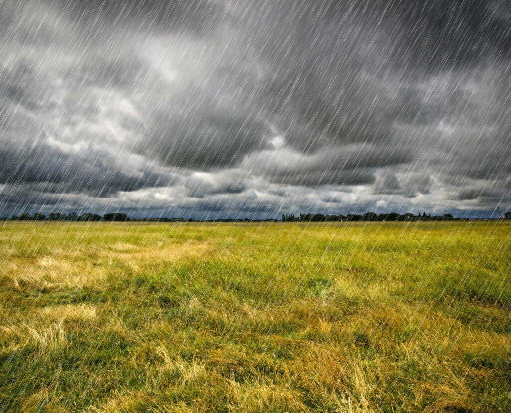 Ministerio de Agricultura de Argentina declaró emergencia agropecuaria en San Juan